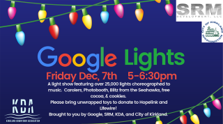 GoogleLights-2018-header
