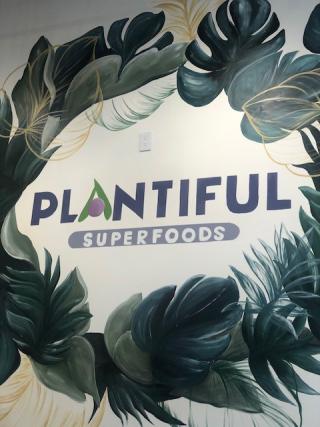 PlantifulMural